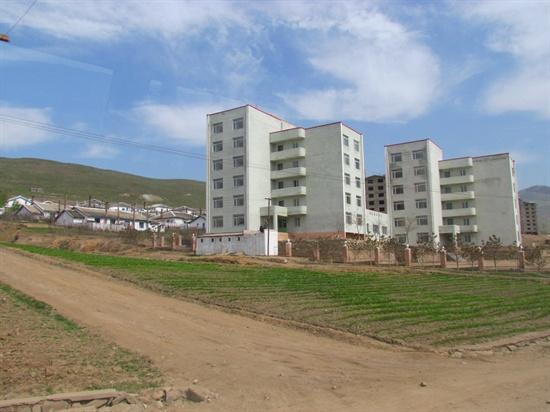 아파트 건물 왼쪽으로 개인 주택들이 보인다. 개인 주택들의 마당에는 예외없이 채소를 재배하고 있다.