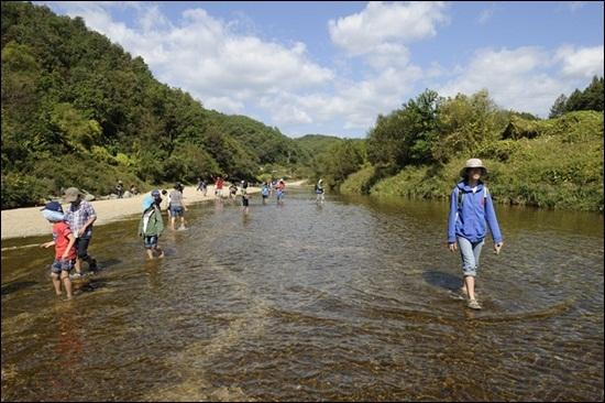 진한 생태체험과 치유와 명상의 시간을 갖게 하는 내성천 모래강 걷기 기행.