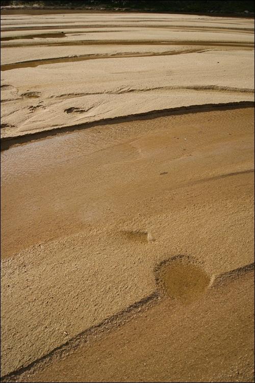 모래의 강 내성천에 가을빛이 완연하다.