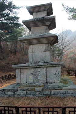 선본사의 탑