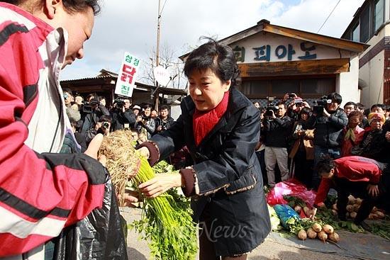 박근혜 새누리당 대선후보가 12일 오후 전북 익산 금마시장을 방문해 미나리를 구입하고 있다.