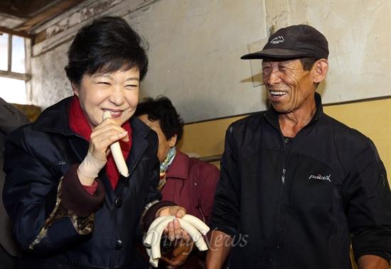 새누리당 박근혜 대선 후보가 12일 오후 전북 익산시 금마면 금마시장을 방문, 한 방앗간을 들러 갓뽑은 가래떡을 맛보고 있다.