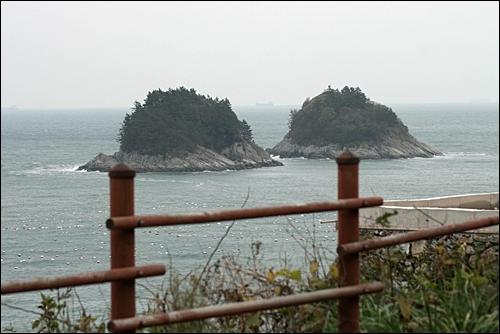 돌산 해안기에서 만난 풍경.