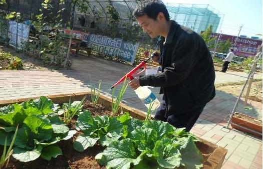 유기농 농약을 주는 모습