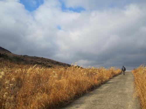 대록산(큰사슴이오름)의 둘레길