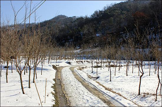 1980년 5월 당시 11공수부대가 주둔했던 주남마을. 내린 눈이 녹지 않고 수북이 쌓여 있다.