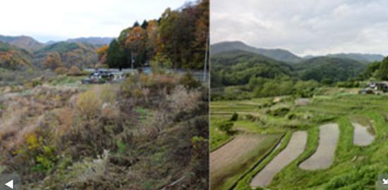 """2008년 일본의 유명한 건설그룹인 미츠비시지쇼그룹과 개간한 농촌의 전후 모습이다. 개간에 참여한 미츠비시지쇼 그룹은 그린 투어리즘으로 참여해 프로그램 비용을 냈다. 소네하라 대표에 따르면 """"1.5톤의 쌀을 그대로 팔면 30만엔에서 40만엔의 수입이 되지만, 모내기 체험 등과 함께 상품화하게 되면 수입이 500만엔으로 10배가 넘는 수익을 얻을 수 있다.""""라고 한다. 이것이 6차 산업이 돈을 버는 방식이다."""