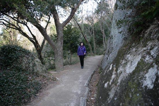 목포 유달산 산책로. 산속 길답지 않게 다소곳이 예쁘다.