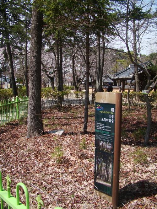 강릉 '초당마을숲'은 2010 제 11회 아름다운숲전국대회 '어울림상'을 받았다.