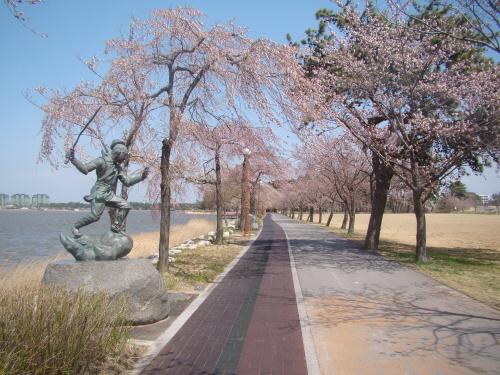 """""""여기도 홍길동이 있네?"""" 소나무와 벚꽃이 어우러진 경포호숫가 산책길에 홍길동 동상이 서 있다."""