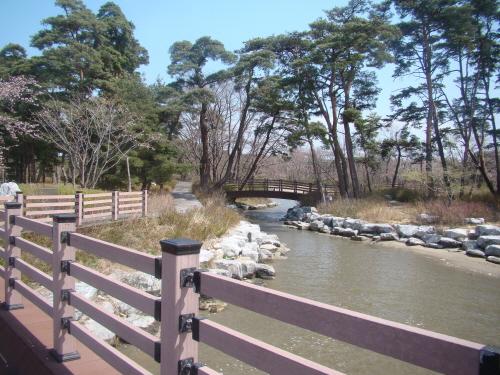 '초당마을숲'을 통과해 '철새관찰오두막' 가는 길의 아름다운 오솔길.