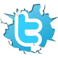 트위터 아이콘