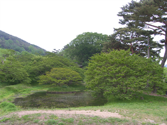 명옥헌 천원지방 연못