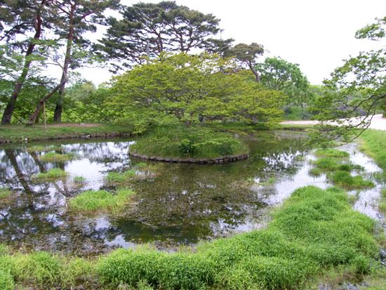 명옥헌 네모난 연목속의 둥그런 섬