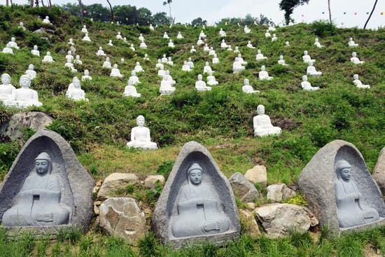 불상 천안 구룡사 주변 언덕에 수많은 불상이 세워져 있다.