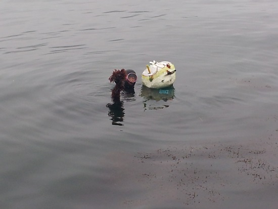 오동도의 마지막 해녀 신한점 할머니가 물질을 한후 채취한 해산물을 보이고 있다.