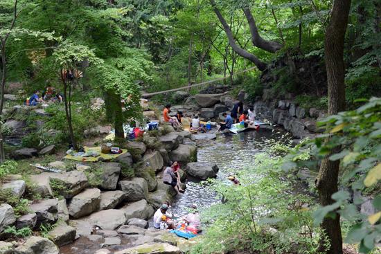 자연의 소리 옥천사 계곡에는 장구소리, 물소리, 매미울음소리가 자연의 오케스트라로 화음을 이루고 있다.