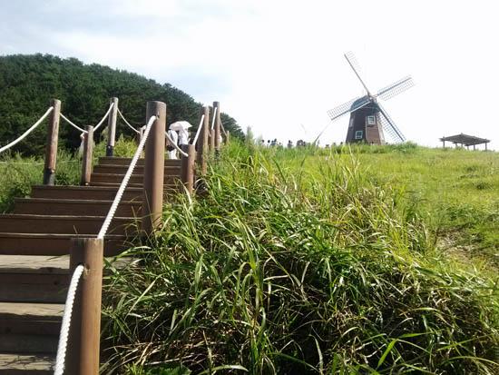 풍차 거제도 바람의 언덕에 자리한 풍차. 가을 향기가 물씬 풍겨나고 있다.