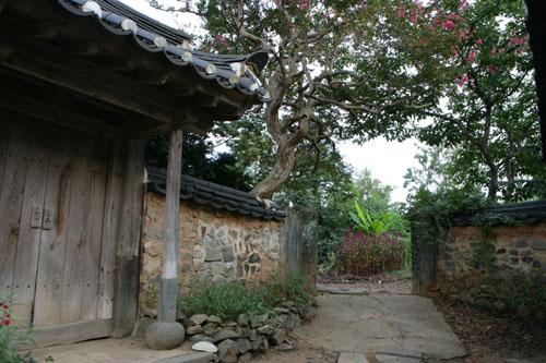 홍기응 가옥의 배롱나무. 건물과 나무에서 세월의 더께가 묻어난다.
