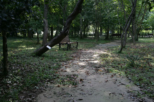 전남산림자원연구소 산책로. 가을의 분위기가 묻어나 운치를 더해 준다.