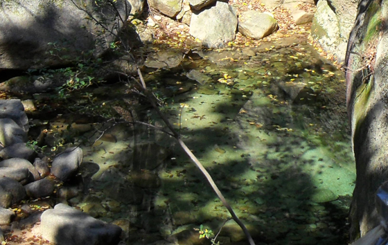 개울 깔닥고개에서 내려오자 개울가 웅덩이에 낙엽만 둥둥 떠 있는 맑은 물이 고여 있었다.
