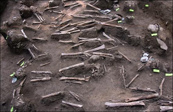 공주 왕촌 살구쟁이 5번째 구덩이에서 발굴된 희생자 유해