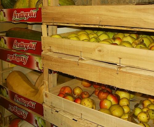 우리 집 켈러의 과일 채소 보관 모습 보관 장소에 여유가 있다면 어떤 채소며 과일이건 가능한 다른 식품이 위에서 누르는 일이 없도록 한 층으로 저장하는 것이 좋다.