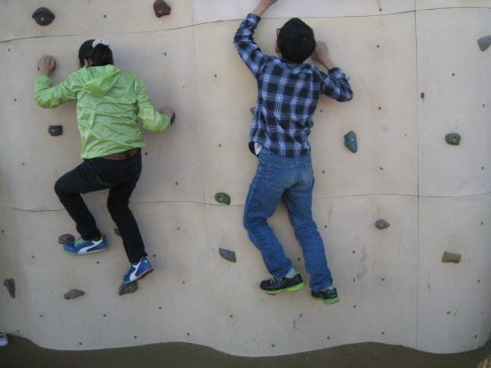 암벽을 타고 있는 아이들. 꼭 개미같습니다