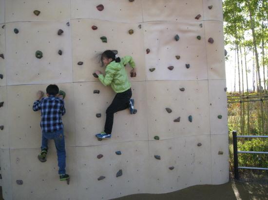 암벽등반하는 아이들