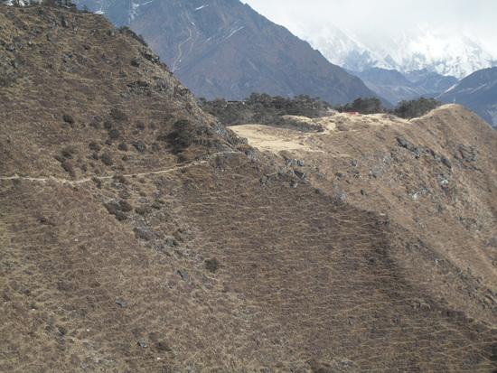 에베레스트 뷰 호텔 숲이 우거진 곳이 에베레스트 뷰 호텔이 있는 곳. 산에 난 수 많은 길은 죱교, 야크, 산양 등이 풀을 뜯어 먹으며 다녀서 생긴 것이다.