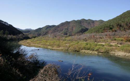 곡성 죽곡면 앞으로 흐르는 대황강 전경. 마을이야기책 '천년의 나무'의 배경이 된 곡성군 죽곡면이 이 강변에 자리하고 있다.