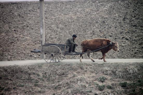 북한에서 찍지 말았으면 한 풍경이지만, 제지하진 않았다.
