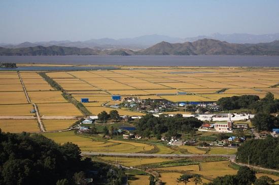 강화군 송해면과 양사면에서는 강 건너 북한이 빤히 바라보입니다.