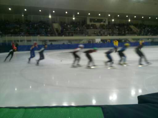 제95회 동계체전 쇼트트랙 경기 장면