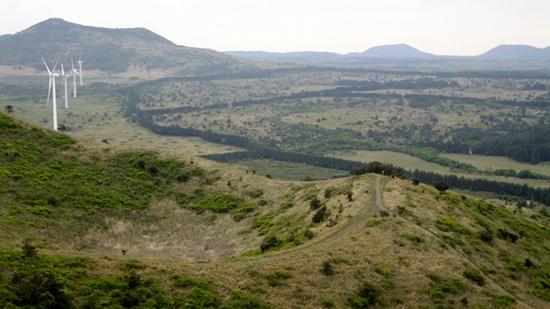 왼편의 큰사슴이 오름, 삼나무가 두른 잣성이 이어진 너른 평원이 파노라마로 펼쳐진다.