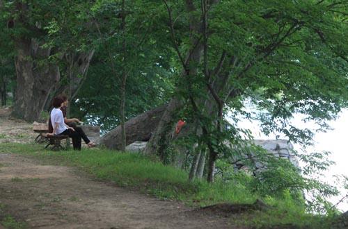 지난 12일 둔동마을 숲정이를 찾은 연인이 동복천이 보이는 의자에 앉아 밀어를 속삭이고 있다.