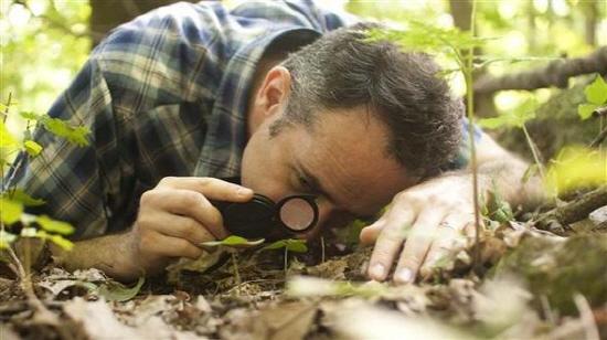 숲에서 우주를 보다 돋보기로 만다라를 관찰하는 데이비드 조지 해스컬