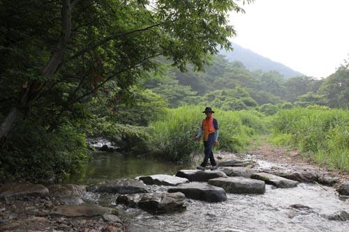 한재골 옛길에서 만난 돌다리. 한재골 계곡을 건너는 재미와 운치가 있다.