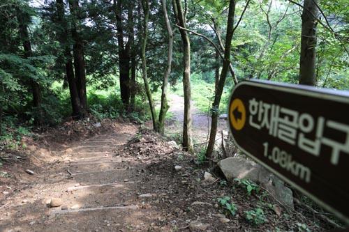 한재골 계곡을 따라 숲 사이로 이어지는 한재골 옛길. 아직 알려지지 않아 호젓함도 묻어난다.