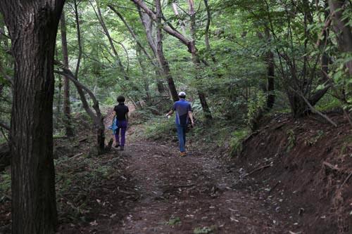 한적한 한재골 옛길. 더위를 피해 거닐며 건강을 챙길 수 있는 숲속 길이다.