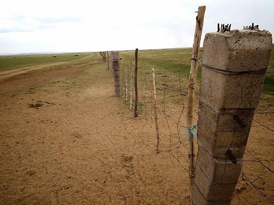 초원을 가르는 철조망 초원이 분활되면서 광대한 지역에 철조망이 세워졌고, 초원을 지속가능하게 만들었던 유목민의 지혜는 점점 사라지고 있다.