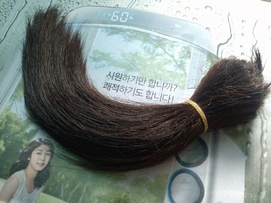 드디어 머리카락을 잘랐다! 총 길이 33cm. 모발기증에 '적합'하단다.