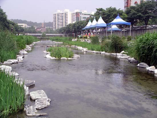 성내천 생태복원공사 후 2 008년 6월 예쁜 모습으로 복원되어가는 성내천