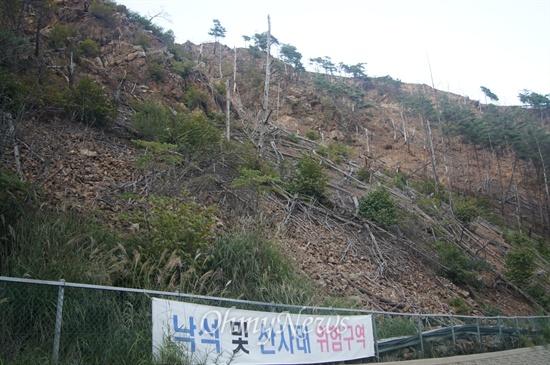 경북 봉화군 석포면 영풍석포제련소 인근 야산의 소나무 등이 상당수가 고사되어 있고 풀도 나지 않았다.