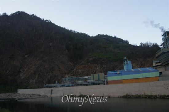 경북 봉화군 석포면 영풍석포제련소 인근의 소나무 등이 원인도 모른채 말라죽어가고 있다.