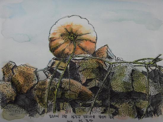 돌담위에 열린 호박(수채펜화 8절) 지금은 헐려버린 찬수네집 다무락 위에 열린 호박.  그림 정종임