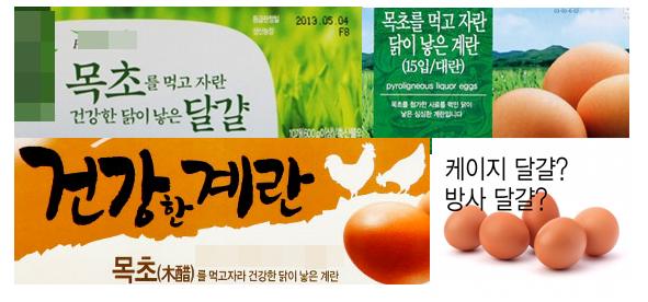 대형마트에서 판매되고 있는 목초란 제품들  닭에게 목초를 먹여 생산했다는 달걀들. 제품 이름과 이미지만으로는 케이지 사육인지 아닌지 알 수 없다.