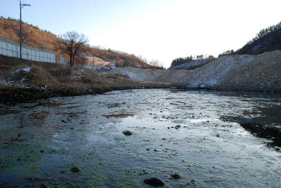 충남 부여군 규암면 금암2리는 지난 2010년, 4대강 사업 준설토를 마을 한복판에 쌓았다. 주민들은 길이 1km, 높이 38m, 폭 100m 정도였다고 주장한다. 준설토 때문에 마을 곳곳에 웅덩이가 생겼다. 웅덩이에는 썩은 녹조가 가득하고 악취가 났다. 눈이 쌓이고 기온이 떨어진 겨울에도 녹조가 가득했다.
