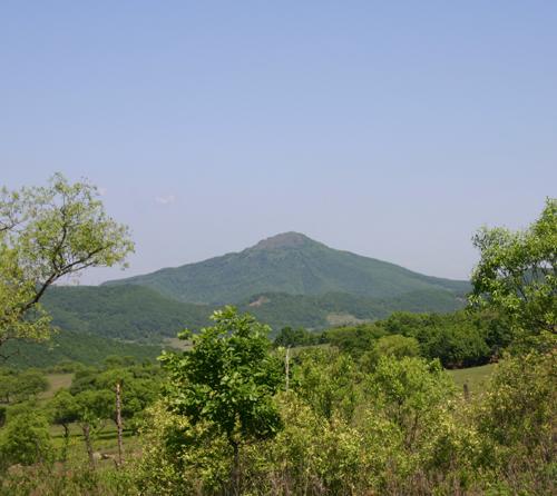 봉오동 초모정자산, 이 산 아래 봉오동 상동, 중동 하동 마을이 있었다(2004. 6. 1. 제3차 항일유적지답사 때 촬영).