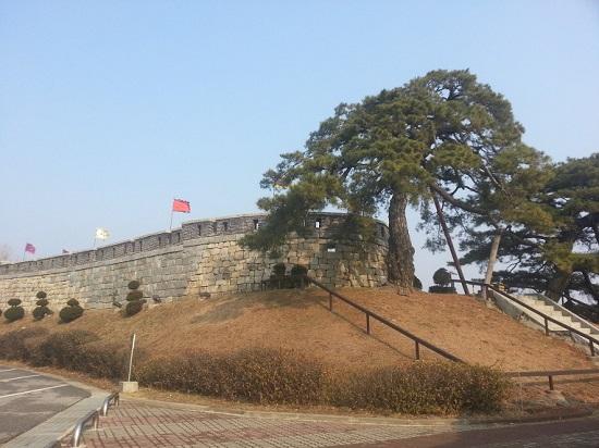 포탄을 맞은 상흔이 남아있는 초지진의 소나무와 성벽